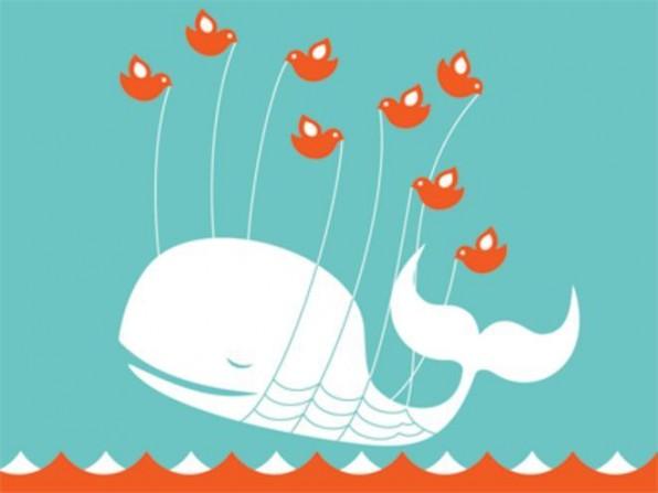 Wenn Twitter nicht funktioniert, dann fliegt der Wal.