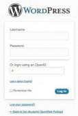 Das OpenID-Plugin für WordPress setzt voraus, dass sich der Nutzer mit OpenID auskennt.