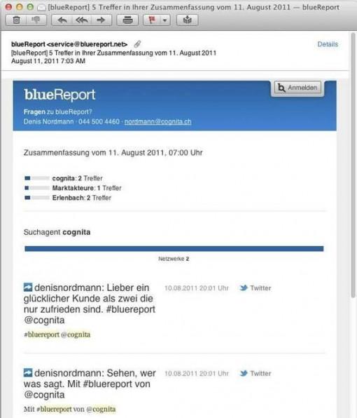Zu den deutschsprachigen Tool-Anbietern zählt beispielsweise blueReport.