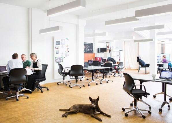Die Tui bietet ihren Mitarbeitern im Konzern eigenen Co-Working-Space in Hannover Startup-Atmosphäre. Das steigert die Kreativität und den Erfolg, sagt die Geschäftsleitung.