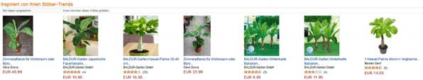 Amazons automatische Personalisierung ist exemplarisch: Im Anschluss an die Suche nach einer Büropflanze zeigte der Shop beispielsweise weitere Pflanzen an, die den zuvor angesehenen Produkten nahekommen.