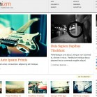 WordPress Themes Pre Modernizm