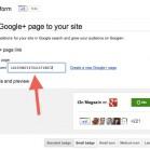 Google+Badges_gross