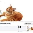 facebook-chronik-kreative1