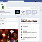 FacebookChronik_Fanseiten_Heineken_ohneCover