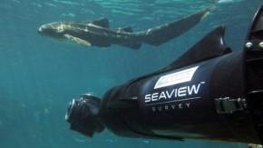SeaView: Google will uns die Unterwasserwelt zeigen [Bildergalerie]