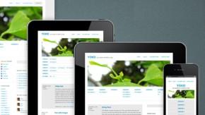 40 kostenlose WordPress-Themes für Responsive Design