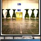iPhoto iOS iphone 7
