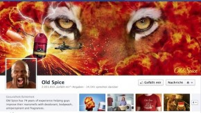 Facebook Chronik: 20 Beispiele für kreative Fanseiten [Bildergalerie]