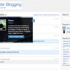WordPress-Theme_P2_2