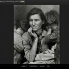 google art project Nelson-Atkins Museum of Art