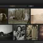 google art project filter