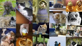 Infinite Scrolling: 33 tolle unendlich scrollende Websites [Bildergalerie]