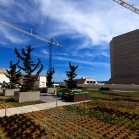 twitter-hq-rooftop-garden