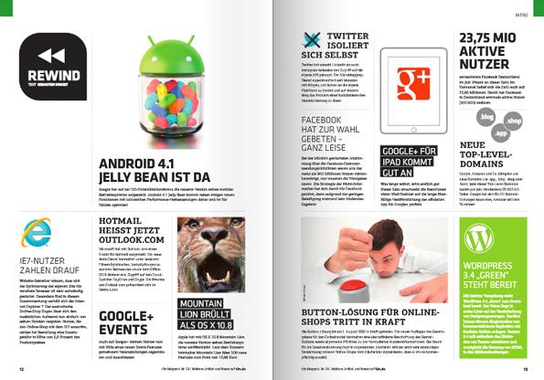 Einfach mal reinblättern: Der Pageflip zum t3n Magazin 29