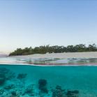 Google SeaView Great Barrier Reef 14