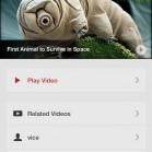 Jasmine-Youtube-app-mzl.lesaapnf.-75