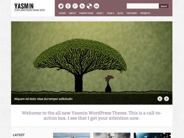 Responsive WordPress-Theme: Yasmin.