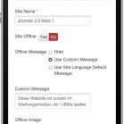 bild25-mobile-site-settings