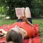 txtr_beagle_grey_picnic1