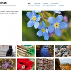 WordPress.comThemes_Hatch