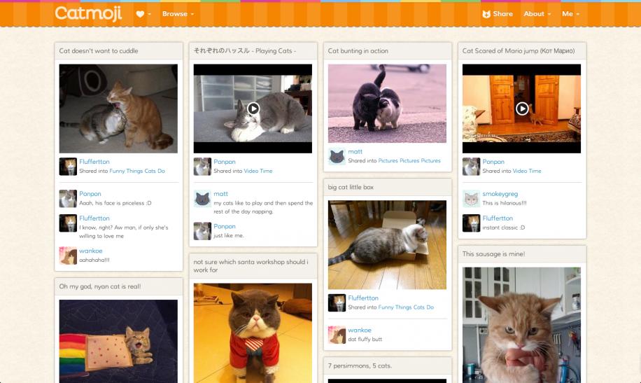 Catmoji: Katzen-Social-Network mit Pinterest-Anstrich