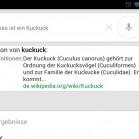 Google-Now-Deutschland-11-29-45
