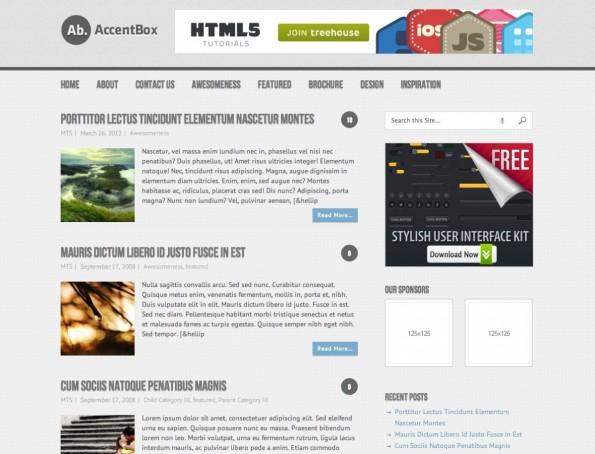 Das WordPress-Theme AccentBox taugt für viele Einsatzzwecke.