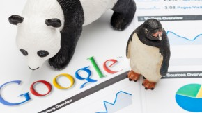 Pinguin, Panda & Co. – Eine Reise durch den Google-Zoo