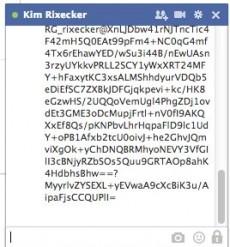 BlockPRISM: Noch Verschlüsselter Text flackerte im Test kurz auf. (Screenshot: Facebook)