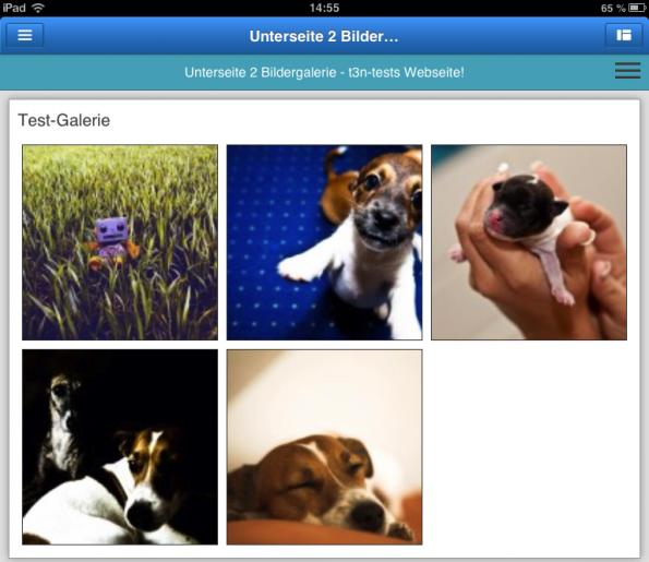 Zu den Elementen, die Jimdo für iOS bietet, gehören auch Bildergalerien.
