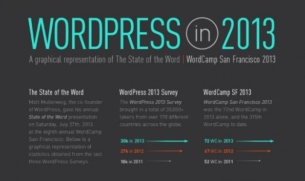 Wordpress 2013 (Infografik: Elegant Themes)