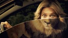printwerbung-zoo-safari-featured