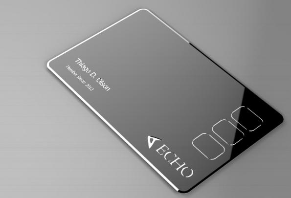 Kreditkartenzahlungen mit der Echo-Card (Screenshot: getprotean.com)