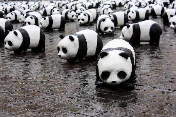 Google: Matt Cutts bestätigt Rollout von Panda 4.0. (Foto: Stéfan / Flickr Lizenz: CC BY 2.0)