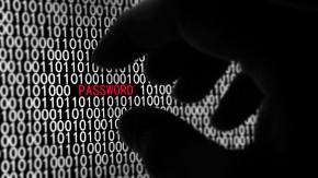 Plagiate: Betrüger missbrauchen echte Nutzerdaten für gefälschte Online-Shops