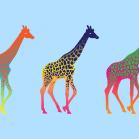giraffeWP