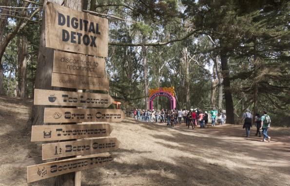 """""""Device-Free Analog Zone"""": Wer bei einem Digital-Detox-Camp mitmachen will, muss Smartphone, Tablet und Co. für eine Weile adieu sagen. (Foto: davitydave  via flickr , Lizenz   CC BY 2.0)"""