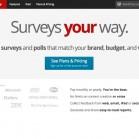tools-fuer-online-umfragen-polldaddy