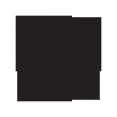 FiftyThree-1