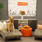 eventbrite-office-war-of-talents