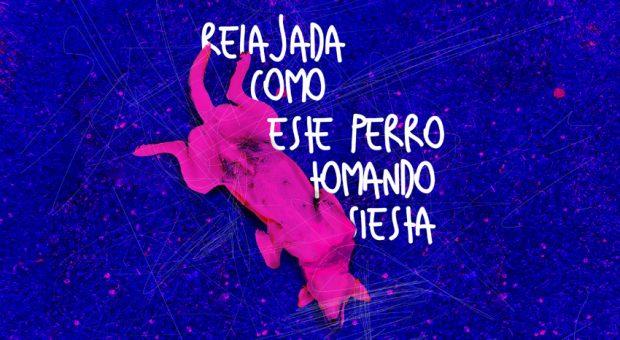 Kostenloser Font: Suelia stammt von den beiden Chilenen Diego Cabrera Ruiz und Rodrigo Alcayaga. (Grafik: Diego Cabrera Ruiz / Rodrigo Alcayaga)