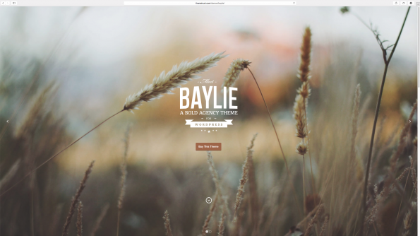 Baylie: Parallax WordPress Theme