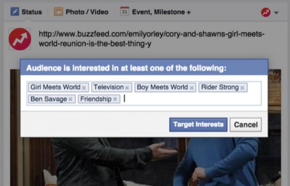 Gepimpte Funktionen für Facebook-Seiten: Verbessertes Targeting. (Screenshot: Facebook)