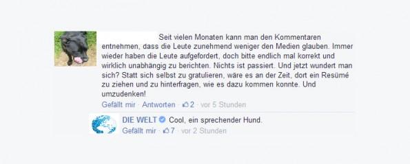 Medien antworten auf vergiftetes Gesprächsklima durch Pegida mit Ironie, Sarkasmus und Satire. (Screenshot: DIE WELT-Facebook)