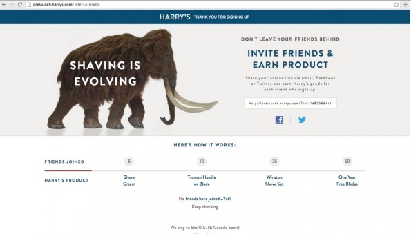 harrys_gruender-referral marketing-newsletter-marketing 4