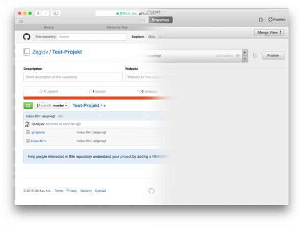 GitHub Remote Publish