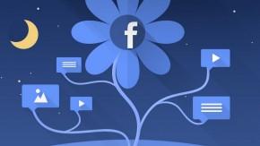 Facebook: So steigerst du organisch die Reichweite deiner Seite [Infografik]