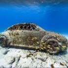 Anlässlich des Welt Ozean Tag veröffentlicht Google neue Aufnahmen für Seaview. (Foto: Google Street View)