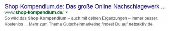 """Ergänzt man bei der Suche nach """"Shop-Kompendium"""" noch den Begriff """"netzaktiv"""", wird anstelle der hinterlegten Description ein Textbereich angezeigt, in dem """"netzaktiv"""" vorkommt. (Screenshot: google.de)"""